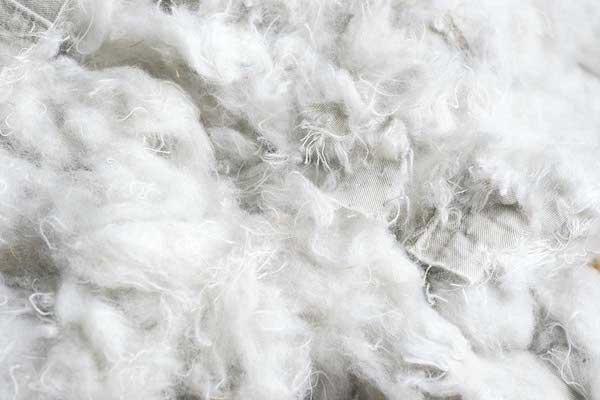 Des fibres de coton prêtes à être recyclées