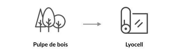 L'origine végétale du lyocell
