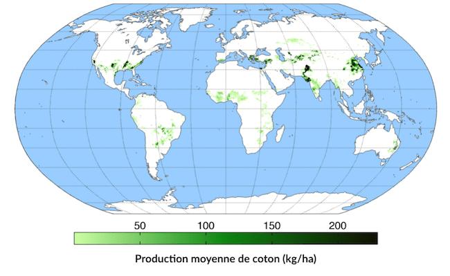 Carte de production moyenne de coton